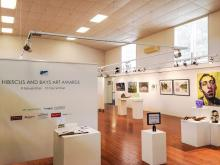 Hibiscus and Bays Art Awards